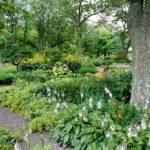 garden-56719_960_720