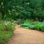 garden-path-59151_960_720